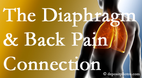 Wilson Family Chiropractic recognizes the relationship of the diaphragm to the body and spine and back pain.