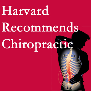 Wilson Family Chiropractic offers chiropractic care like Harvard recommends.