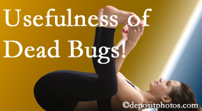 Wilson Family Chiropractic finds dead bugs quite useful in the healing process of Millville back pain for many chiropractic patients.