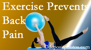 Wilson Family Chiropractic suggests Millville back pain prevention with exercise.