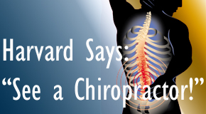 Millville chiropractic for back pain relief urged by Harvard