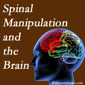 Wilson Family Chiropractic [presents research on the benefits of spinal manipulation for brain function.